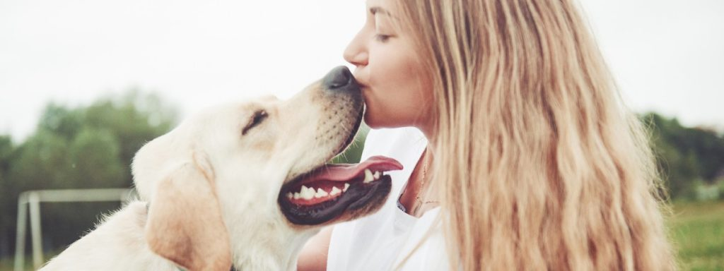 4 Great Benefits Of Having A Dog In Your Life